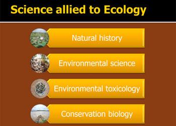 Boundless Biology
